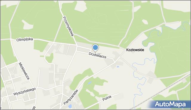 Luzino, Drzewiarza, mapa Luzino