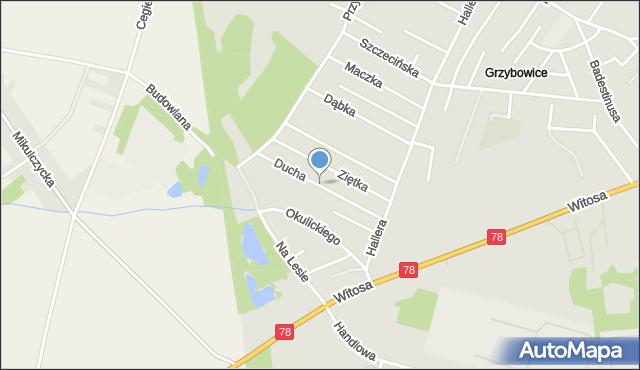 Zabrze, Ducha Bronisława, gen., mapa Zabrza