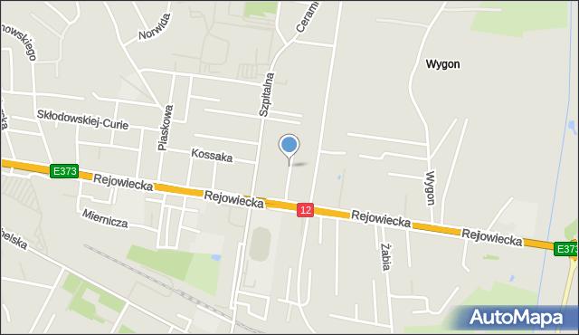 Chełm, Działkowa, mapa Chełma