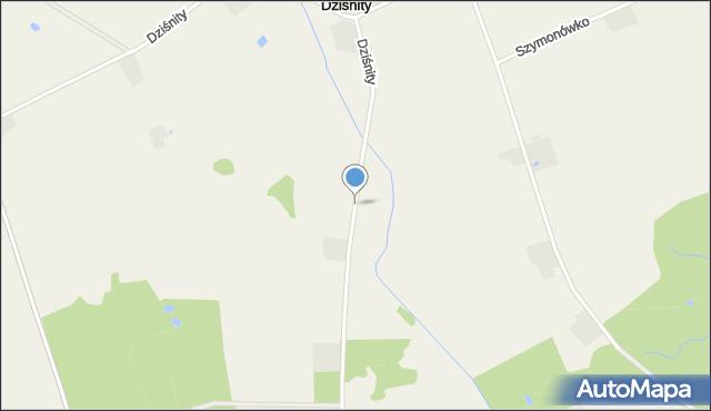 Dziśnity gmina Małdyty, Dziśnity, mapa Dziśnity gmina Małdyty