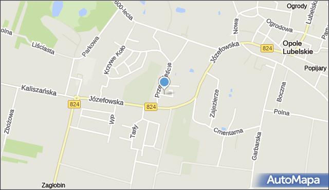 Opole Lubelskie, Działkowa, mapa Opole Lubelskie