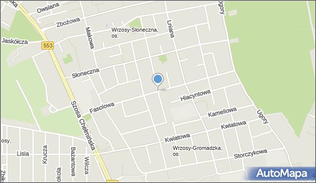 Toruń, Fasolowa, mapa Torunia