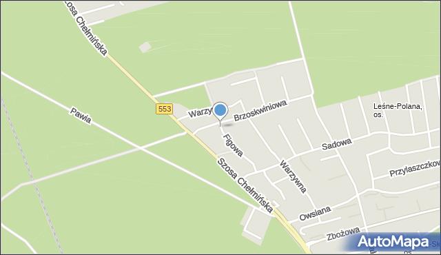 Toruń, Figowa, mapa Torunia