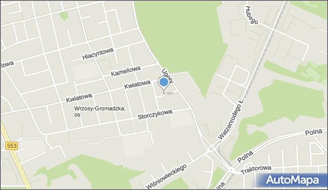 Toruń, Fiołkowa, mapa Torunia