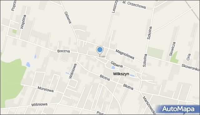 Wilkszyn, Główna, mapa Wilkszyn