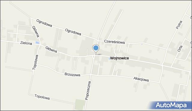 Wojnowice gmina Czernica, Główna, mapa Wojnowice gmina Czernica