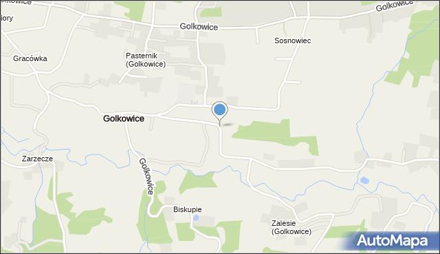 Golkowice, Golkowice, mapa Golkowice