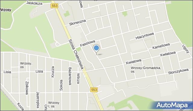 Toruń, Goździkowa, mapa Torunia