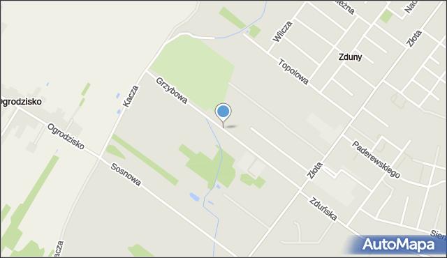 Zduńska Wola, Grzybowa, mapa Zduńska Wola