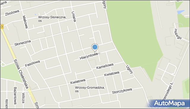 Toruń, Hiacyntowa, mapa Torunia