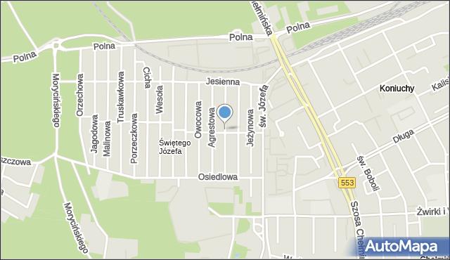Toruń, Irysowa, mapa Torunia