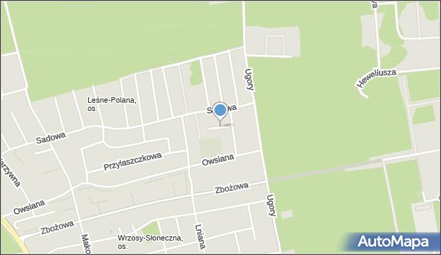 Toruń, Jemiołowa, mapa Torunia