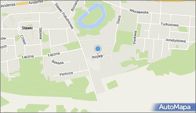 Toruń, Jeżyka, mapa Torunia