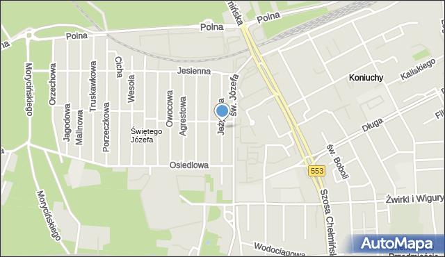Toruń, Jeżynowa, mapa Torunia