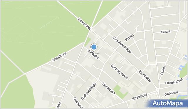 Bolszewo, Junacka, mapa Bolszewo