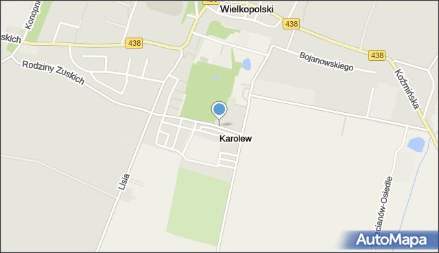 Karolew gmina Borek Wielkopolski, Karolew, mapa Karolew gmina Borek Wielkopolski
