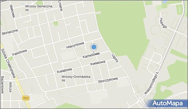 Toruń, Kameliowa, mapa Torunia