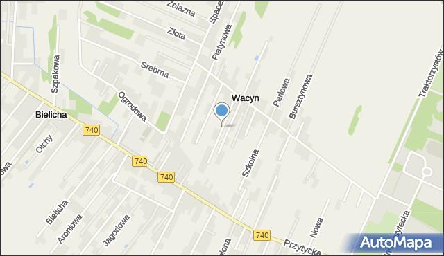 Wacyn, Kamienna, mapa Wacyn