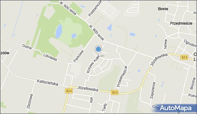 Opole Lubelskie, Krzywe Koło, mapa Opole Lubelskie