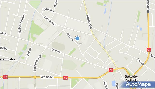 Sokołów Podlaski, Krzywa, mapa Sokołów Podlaski