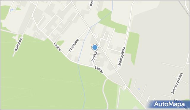 Wilkszyn, Krótka, mapa Wilkszyn