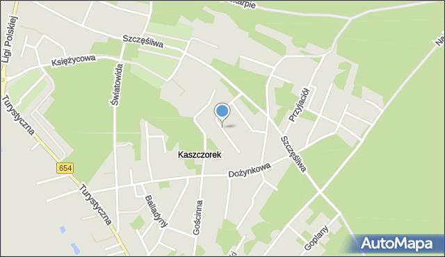 Toruń, Kubusia Puchatka, mapa Torunia