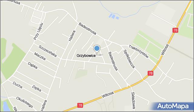Zabrze, Kurpiowska, mapa Zabrza