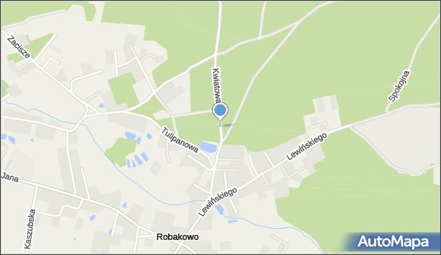 Robakowo gmina Luzino, Kwiatowa, mapa Robakowo gmina Luzino