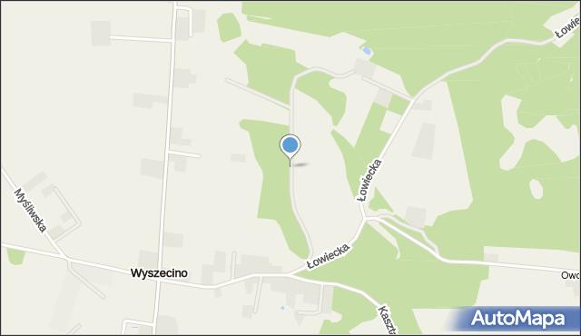 Wyszecino, Łąkowa, mapa Wyszecino