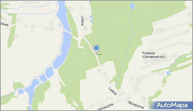 Gierałtowiczki, Leśna, mapa Gierałtowiczki