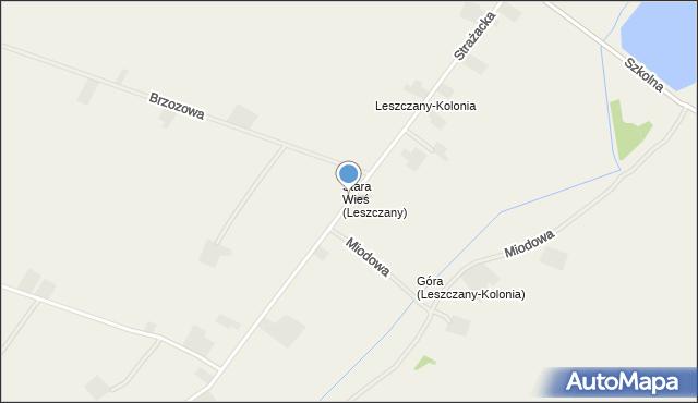 Leszczany-Kolonia, Leszczany-Kolonia, mapa Leszczany-Kolonia