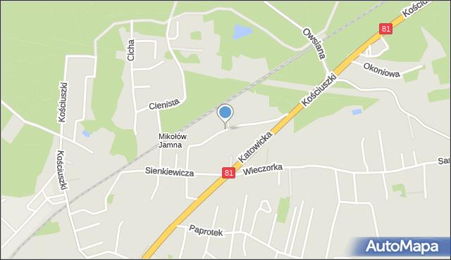 Mikołów, Leśna, mapa Mikołów