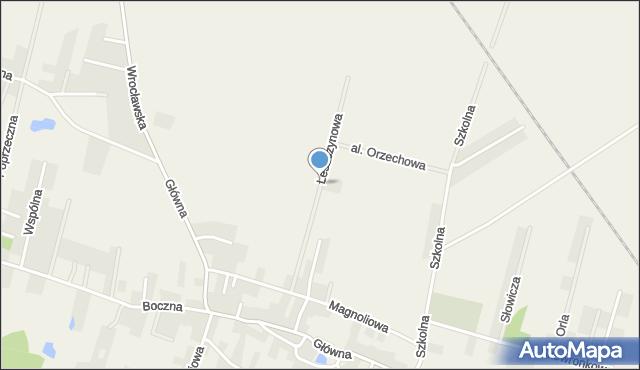 Wilkszyn, Leszczynowa, mapa Wilkszyn