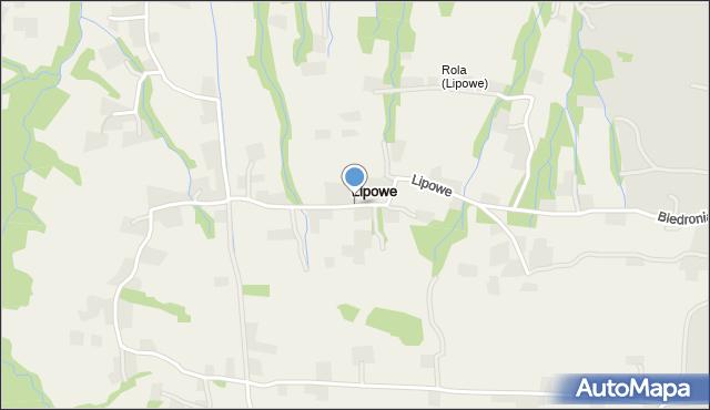 Lipowe gmina Limanowa, Lipowe, mapa Lipowe gmina Limanowa