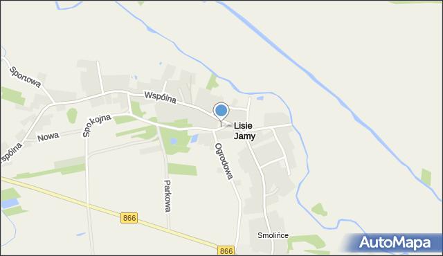 Lisie Jamy gmina Lubaczów, Lisie Jamy, mapa Lisie Jamy gmina Lubaczów
