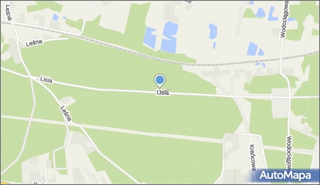 Mała Nieszawka, Lisia, mapa Mała Nieszawka