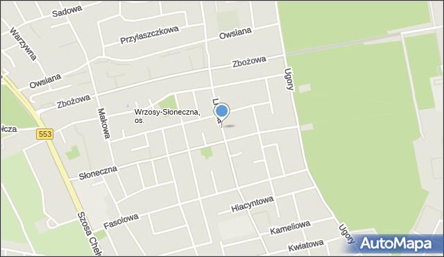 Toruń, Lniana, mapa Torunia