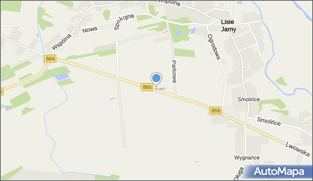 Lisie Jamy gmina Lubaczów, Lwowska, mapa Lisie Jamy gmina Lubaczów