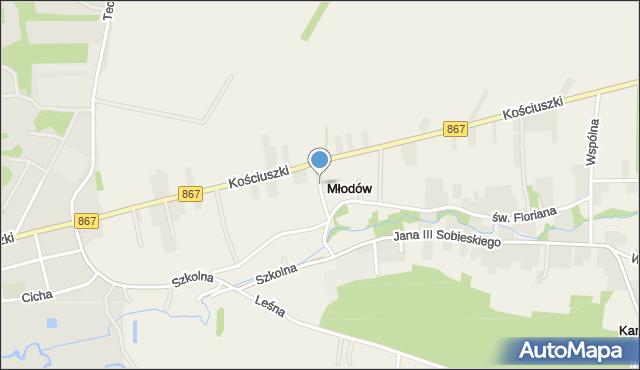 Młodów gmina Lubaczów, Młodów, mapa Młodów gmina Lubaczów