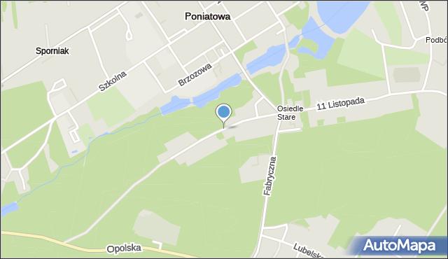 Poniatowa powiat opolski, Modrzewiowa, mapa Poniatowa powiat opolski
