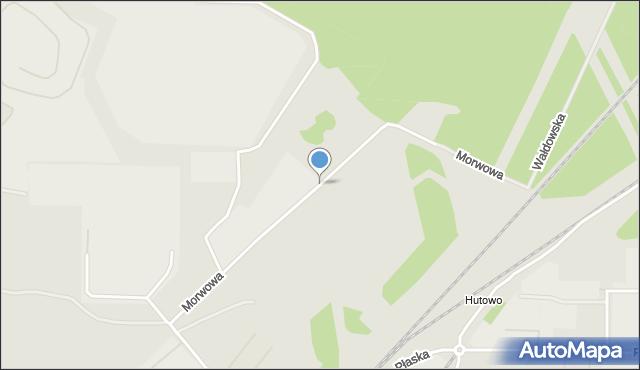 Toruń, Morwowa, mapa Torunia