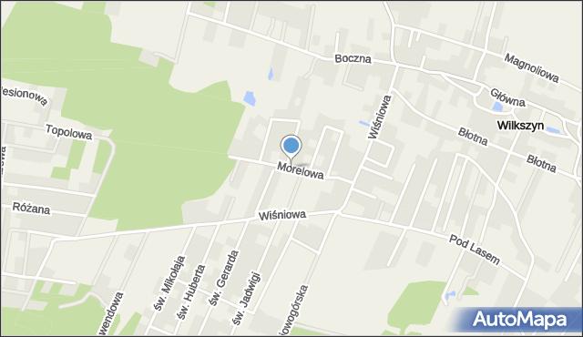 Wilkszyn, Morelowa, mapa Wilkszyn