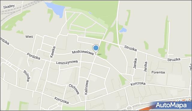 Zabrze, Modrzewiowa, mapa Zabrza