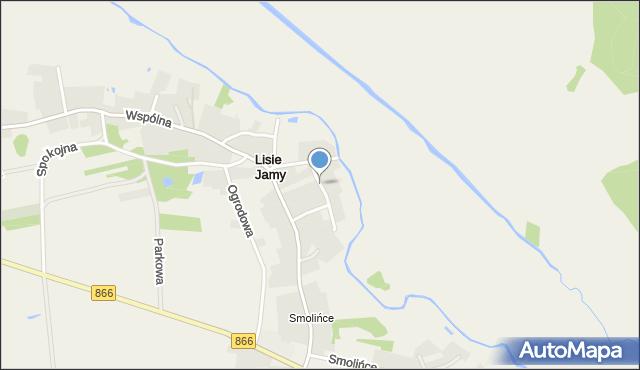 Lisie Jamy gmina Lubaczów, Nadrzeczna, mapa Lisie Jamy gmina Lubaczów