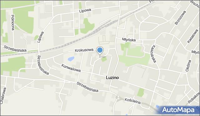 Luzino, Narcyzowa, mapa Luzino