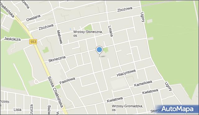 Toruń, Narcyzowa, mapa Torunia
