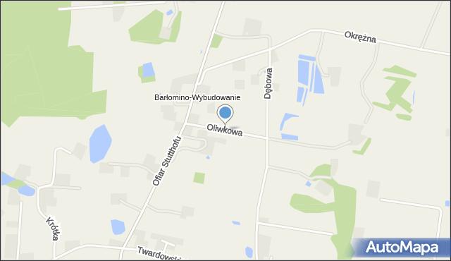 Barłomino, Oliwkowa, mapa Barłomino
