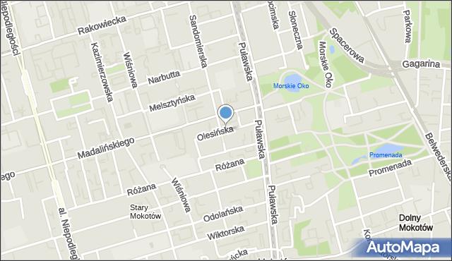 Warszawa, Olesińska, mapa Warszawy