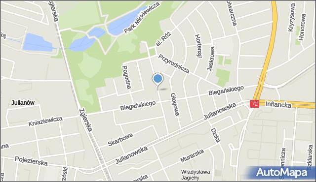 Łódź, Orzeszkowej Elizy, mapa Łodzi