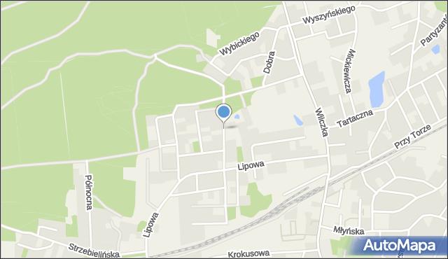 Luzino, Orzechowa, mapa Luzino